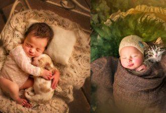 Fantastische Fotos von Kindern und Tieren. Sie sehen so süß miteinander aus!