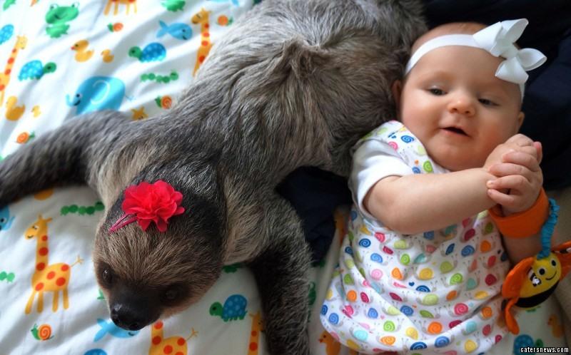 Dieses kleine Mädchen hat einen Freund, Sie werden überrascht sein zu sehen, wer es ist!