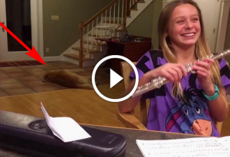 Sobald sie die Flöte spielt, sehen Sie, was ihr Hund tut!