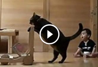 Diese Katze bringt dem Baby bei, zu gehen. Fantastisch!