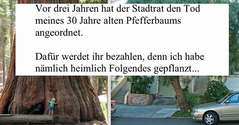 Mann rächt sich kreativ an Stadt für Fällen von Lieblingsbaum.
