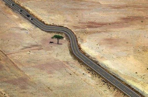 15 schöne Bilder davon, was Respekt vor der Natur bedeutet
