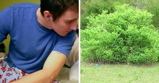 Er raucht letzte Zigarette vor seinem geplanten Selbstmord – da hört er ein Rascheln im Gebüsch