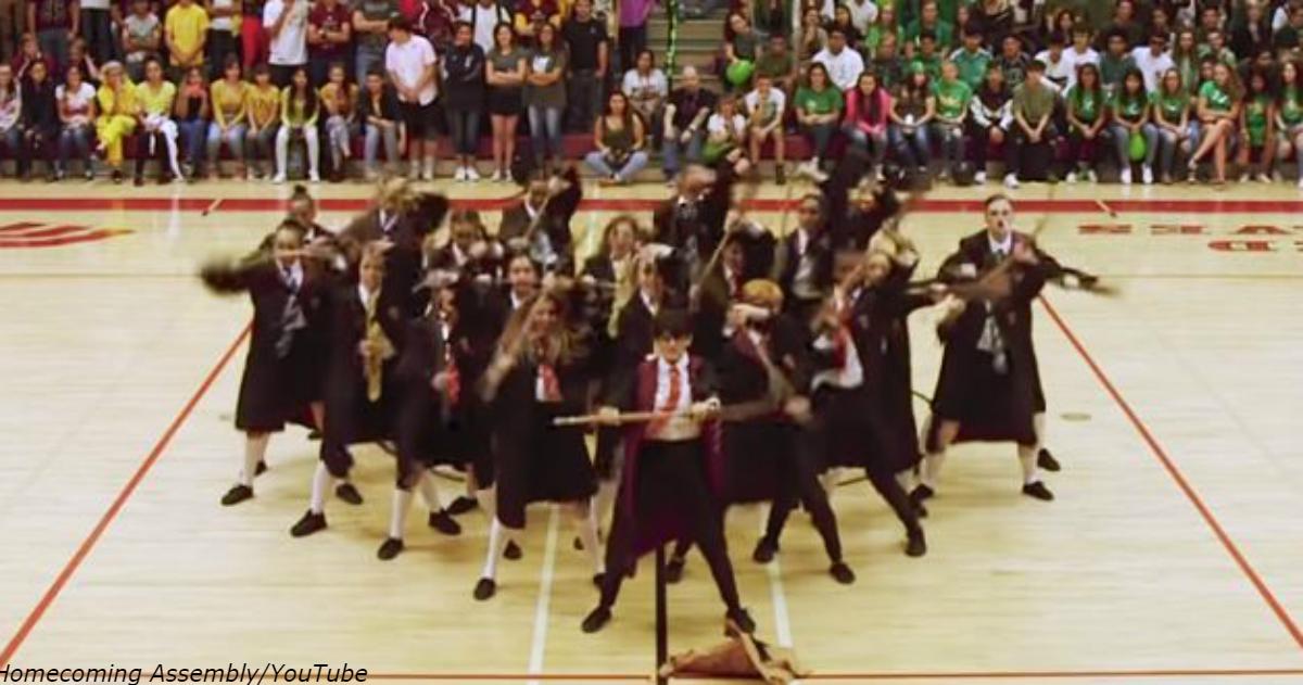 Die ganze Handlung von Harry Potter in einem Tanz   ein erstaunliches Video von gewöhnlichen Schulkindern.