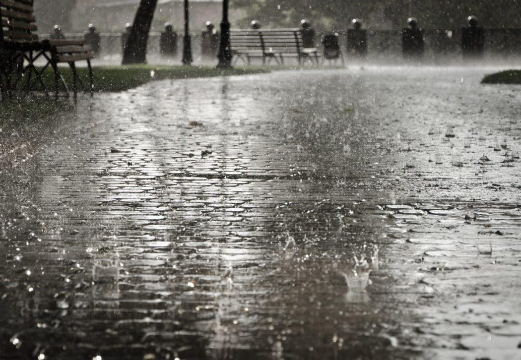 Petrikor   so heißt der Geruch nach dem Regen