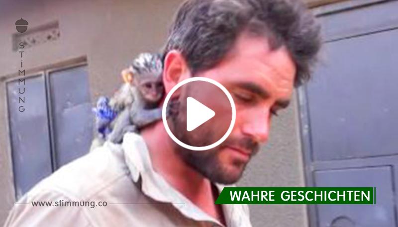 Der Mann rettete den Affen vor dem wilden afrikanischen Feuer. Schau sie dir an! So sieht die Dankbarkeit aus.