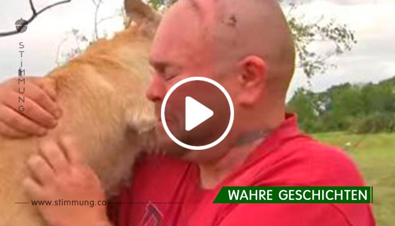 Er dachte, sein Hund wurde von einem Tornado umgeworfen. Aber der Schutzengel hat etwas für sie beide vorbereitet...