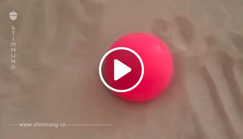 Wussten Sie, dass Sand in eine ,,Flüssigkeit,, verwandelt werden kann?