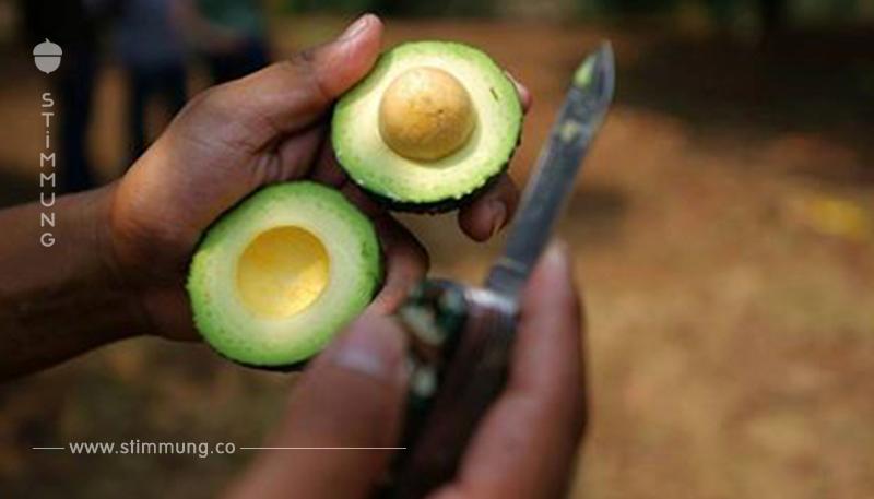 """Sterne Koch nennt Avocados """"die Blutdiamanten Mexikos"""""""