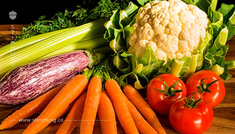 Swift Diät – Den Darm füttern und dabei abnehmen