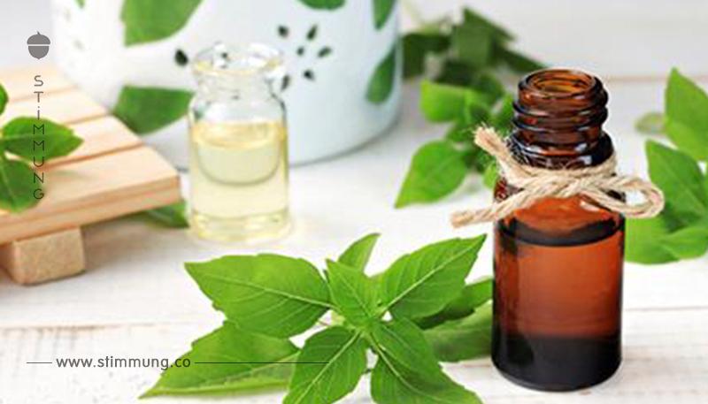 Ätherische Öle: Anwendung und Wirkung