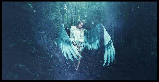 Hochsensible Menschen sind in Wirklichkeit Engel mit gebrochenen Flügeln