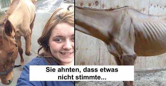 Tierschützer überführen Pferde Quälerin durch Selfie.