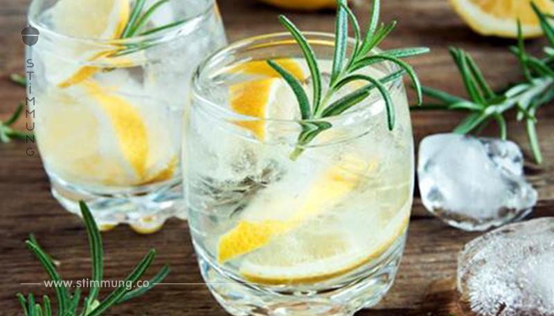 Die 3 besten Gin News aller Zeiten