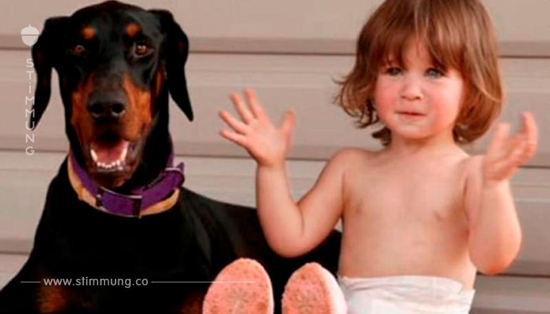 Mutter in Schock, als Hund ihre Tochter beißt – Sieht dann Pfote und realisiert scheußliche Wahrheit
