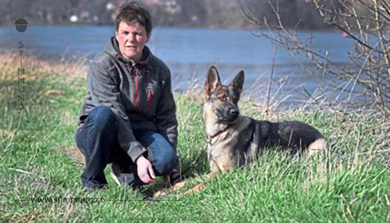RATTENGIFT AUF DRESDNER ELBWIESEN Hundehasser legten mindestens 40 Giftköder aus