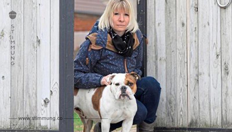 HUND QUALVOLL GESTORBEN Gift Attacke auf Bulldoggen