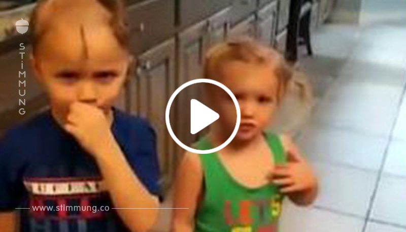 Kleiner Junge rasiert seinen Kopf und den der Schwester, als er einen elektrischen Rasierer findet