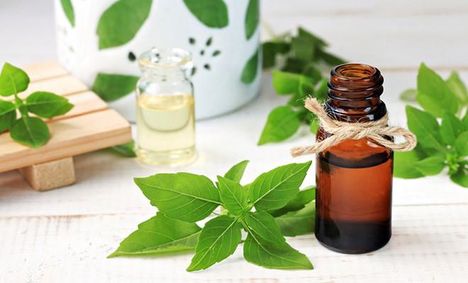 Ätherische Öle: Anwendung und Wirkung im Überblick
