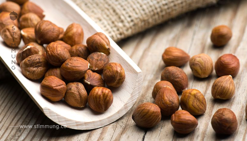 Haselnüsse: Snack mit vielen Vitaminen und gesunden Fetten