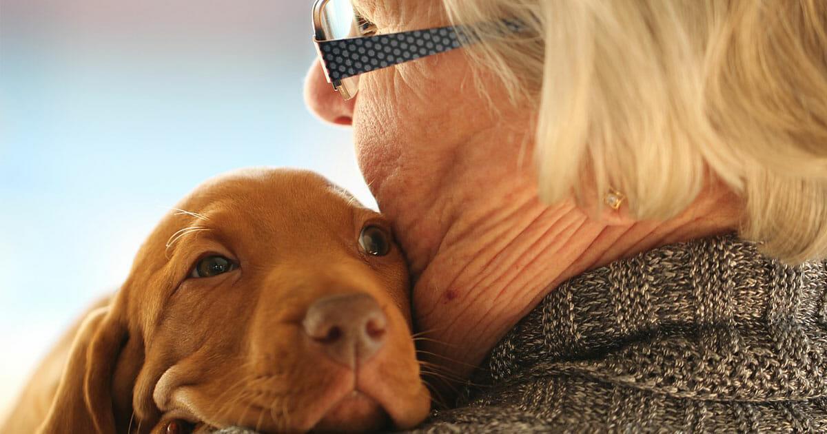 Sachsen-Anhalt/Thale: Altenheim erlaubt Bewohnern, mit ihren Haustieren zusammenzuwohnen