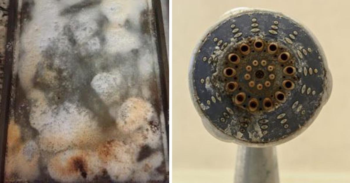 12 schwer zu reinigende Gegenstände und wie du sie richtig putzt.