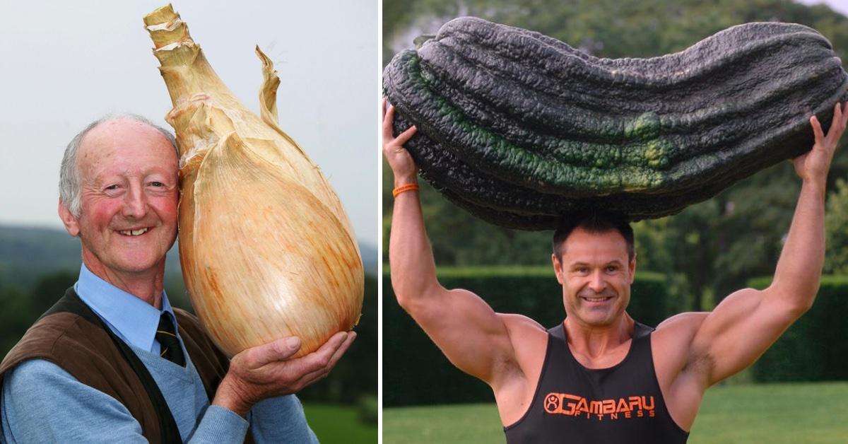15 riesige Gemüsesorten aus eigenem Anbau