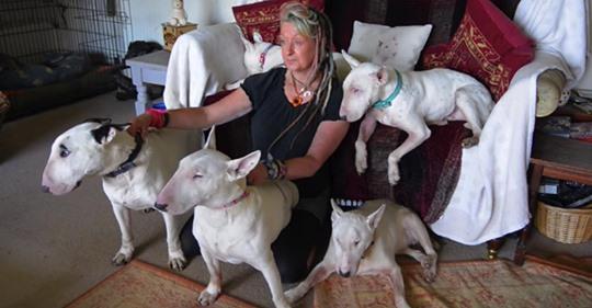 Ein Mann zwang seine Frau, sich zwischen ihren Hunden und ihm zu entscheiden, und sie blieb bei den Hunden