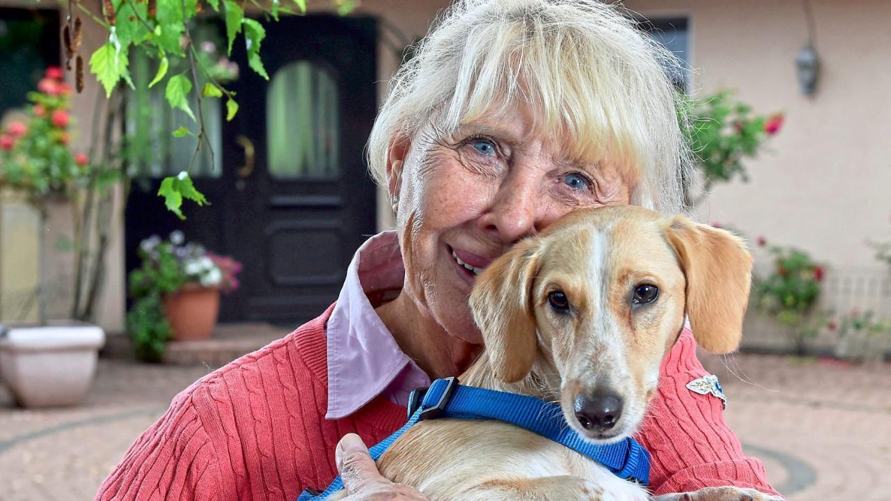Engel für vier Pfoten: Tierschützerin Gudrun Lumpp gab Millionen für Hunde aus