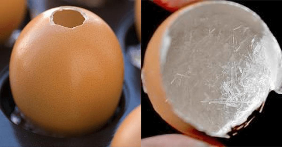 11 Tricks, Eierschalen sinnvoll zu nutzen.