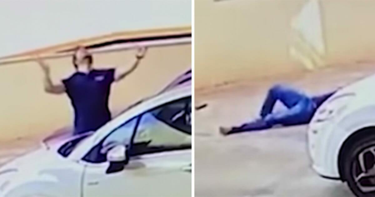 Hündin fällt aus 9. Stock vom Balkon – Kamera nimmt auf, was ein Passant daraufhin macht