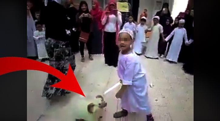 Schock VIDEO: Kleines Kind muss blutiges Schächten lernen!