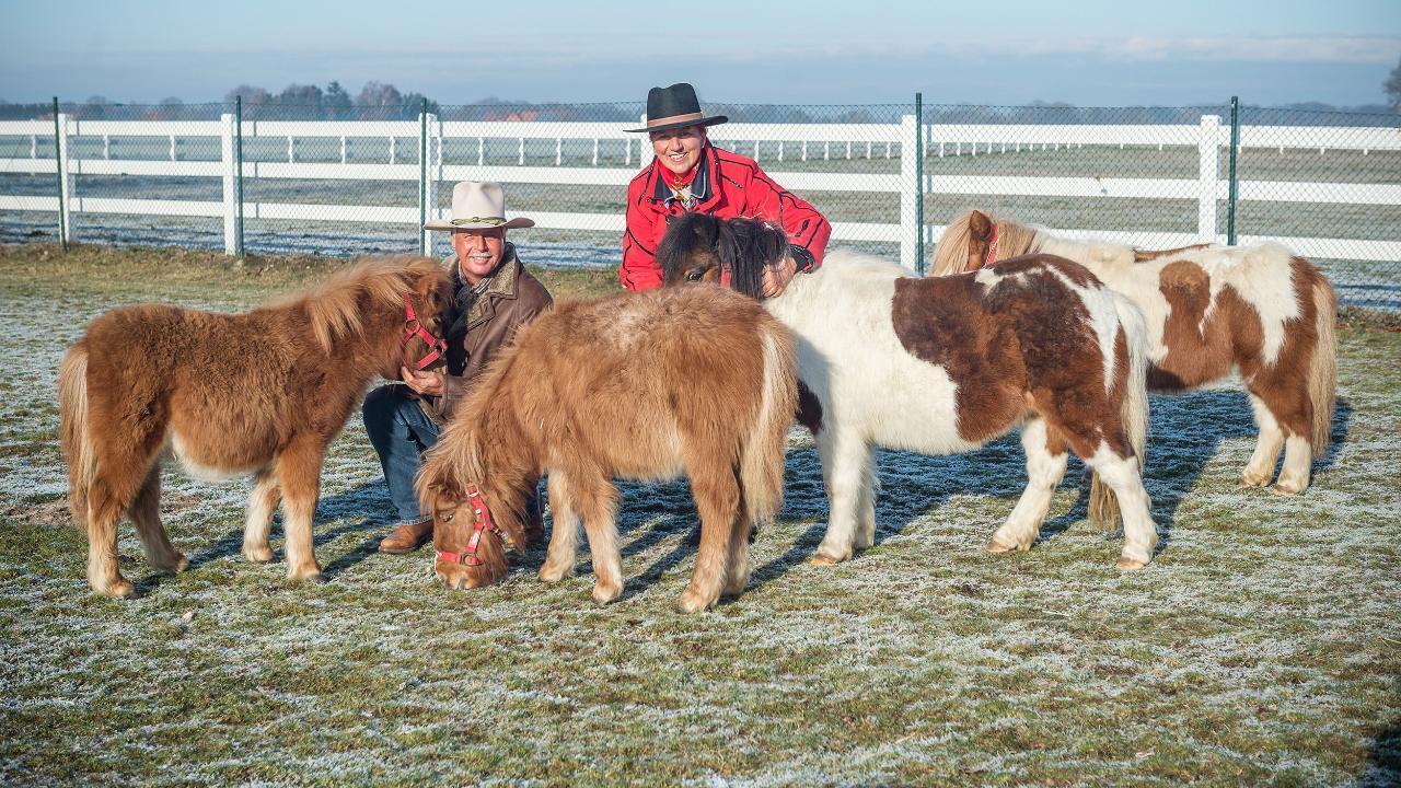 Anwesen verschenkt: Ballermann Ranch jetzt ein Pferde Paradies