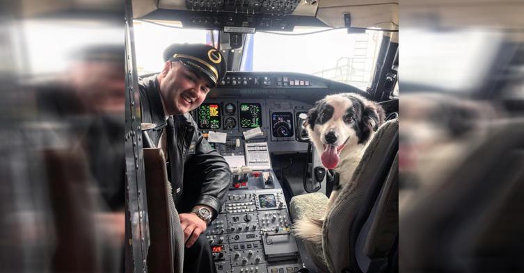 Dieser Hund hat den coolsten Job der Welt!