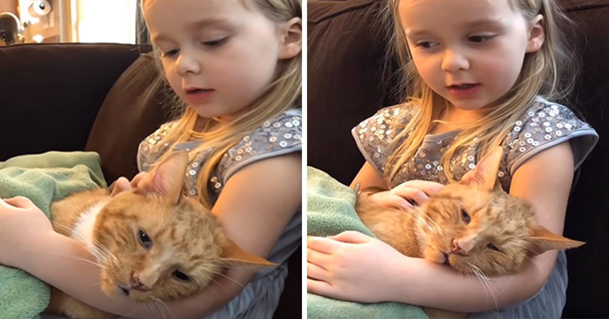 Ein kleines Mädchen singt ihrer Katze You Are My Sunshine vor, während sie stirbt