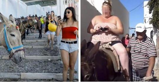 Griechische Insel verbiete übergewichtigen Touristen auf Eseln zu reiten