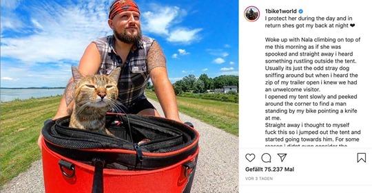 Mann nimmt streunende Katze auf und fährt mit ihr auf dem Fahrrad durch Europa