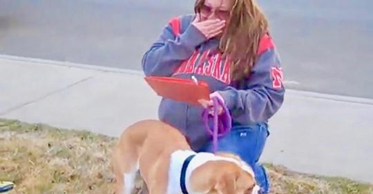 Person, die Hund adoptieren wollte, taucht nicht auf – Pflegemutter begreift, dass sie diejenige ist, die ihn mit nach Hause nehmen wird