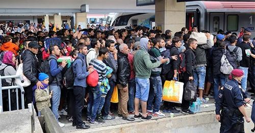 Stümperhafte Studie soll Bildungsgrad von Asyl-Migranten schönen