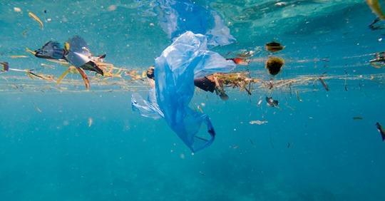 Plastikfreie Meere bis 2050: Staats- und Regierungschefs geben