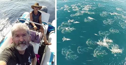 Ein Mann fliegt eine Drohne über den Ozean und nimmt unglaublich seltene Ereignisse mit der Kamera auf