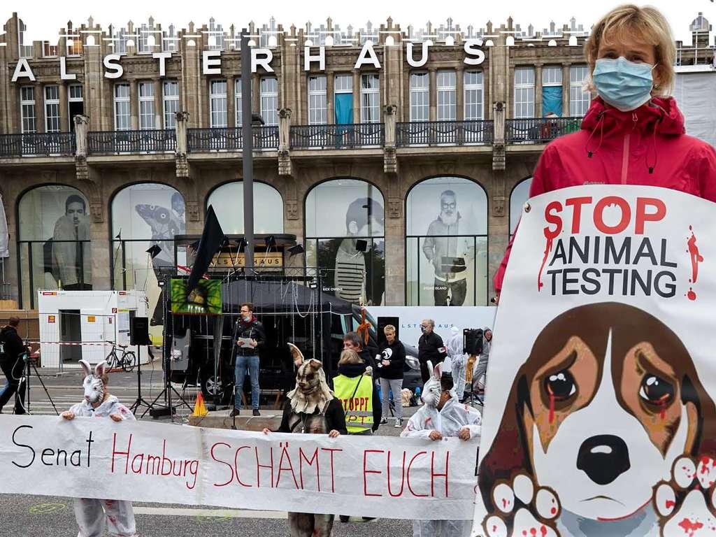 Horror-Tierlabor bei Hamburg geschlossen & wird zum Tierheim für benachteiligte Hunde