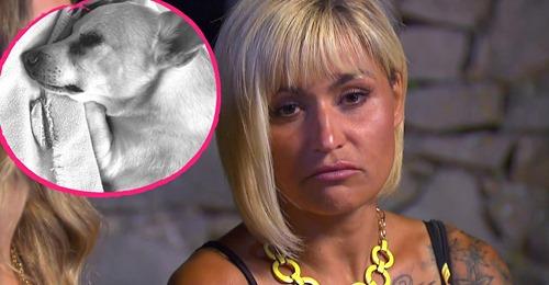 Ein Tag nach Willi Herren: Auch Jasmins Hund ist gestorben!