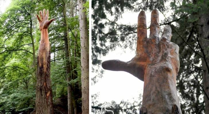 Ein Mann verwandelte einen Baum, der gefällt werden sollte, in eine riesige Hand, die sich in den Himmel streckte