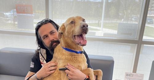Mann dank Mikrochip nach vier Jahren wieder mit verloren geglaubtem Hund vereint