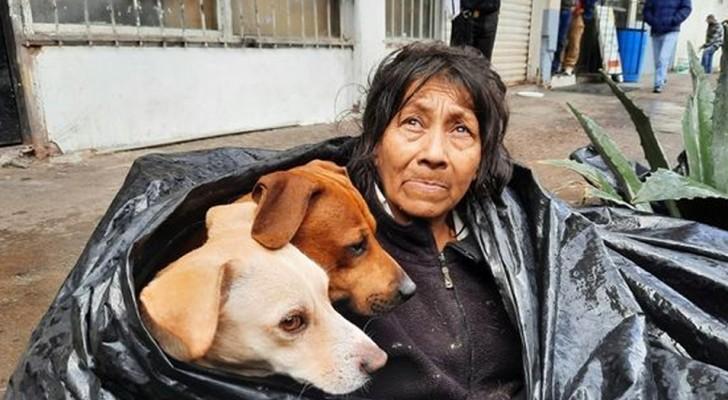 Eine obdachlose alte Frau zieht es vor, auf der Straße zu leben statt in einem Heim: Sie will sich nicht von ihren geliebten Hunden trennen