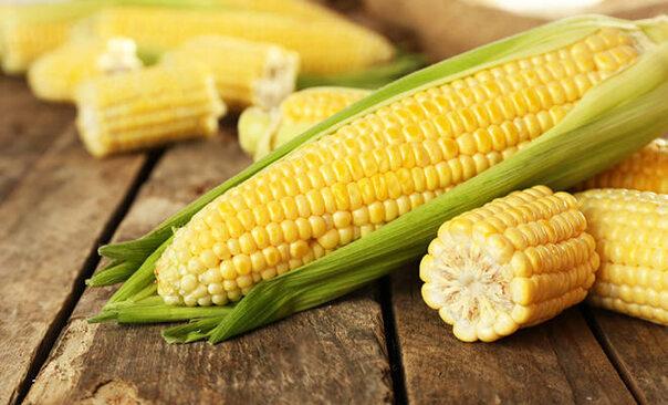 Mais – gesund, nahrhaft und lecker