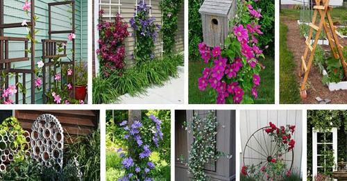 Schöne und inspirierende DIY Beispiele: Mit einem Gitter in Ihrem Garten schaffen Sie eine zusätzliche Dimension.