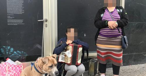 MIESE MASCHE IN BERLIN Tierärzte stoppen Hundebettler am Alex