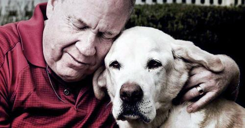 Mann gedenkt seinem Blindenhund, der ihn am 11. September aus dem World Trade Center rettete